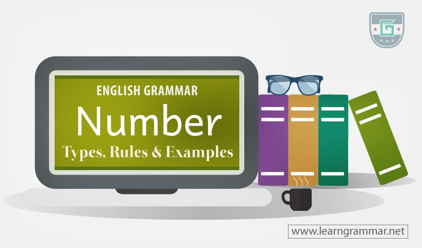 Number: Types, Rules & Examples